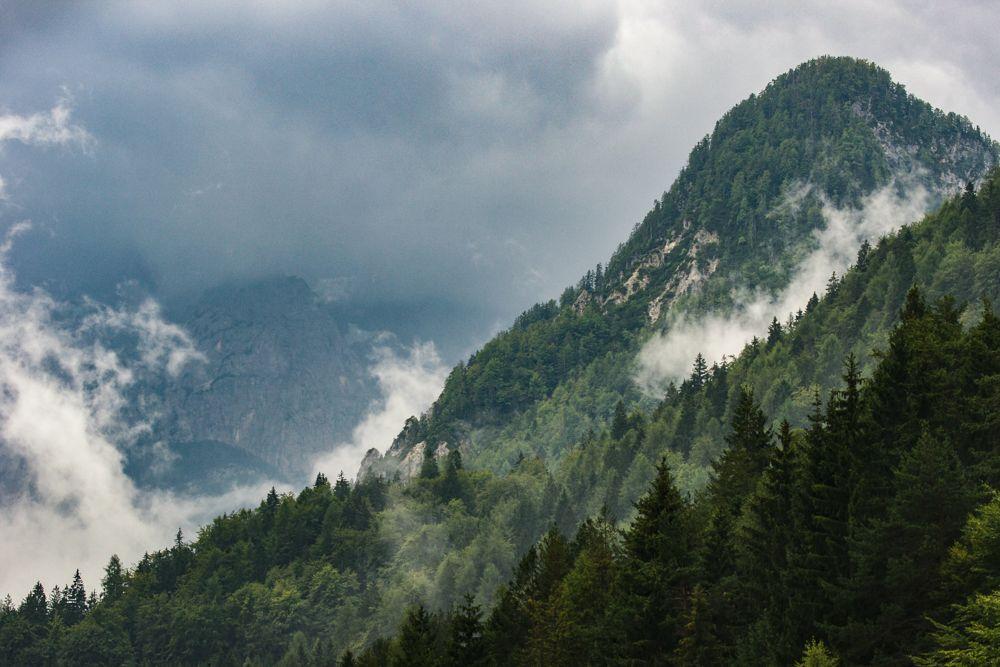 Slovenia 3