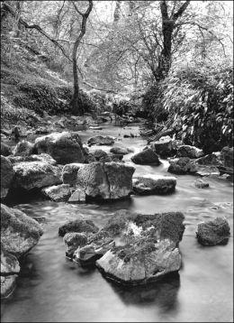Bishopston Valley, Gower