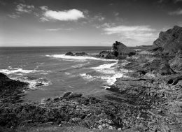 The Knave #2 Gower