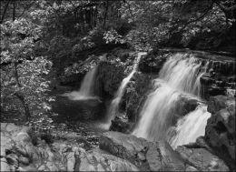 River Neath #1