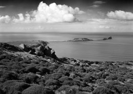 Worms Head #3. Gower