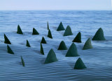 Bewilder Land Shark fins made in scale/ response to survey of what women worry about most.