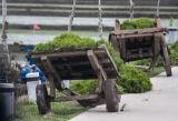 Laden carts awaiting their oxen.