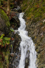 A stream flowing into Lake Windermere