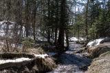 Sobaek stream, near Mount Paektu
