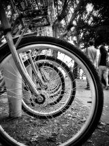 Spiral of Wheels