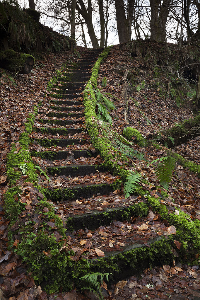 stairs less travelled