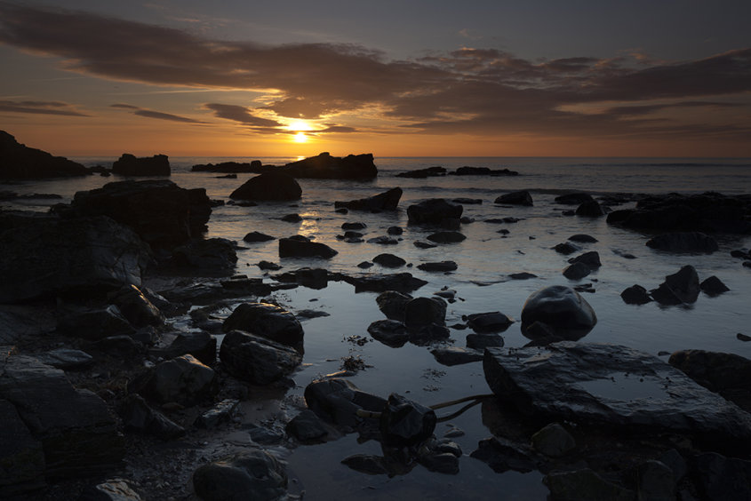 sunrise, forvie nature reserve