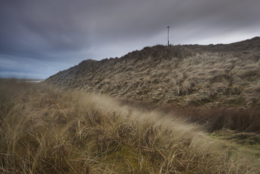 winter winds, forvie sands