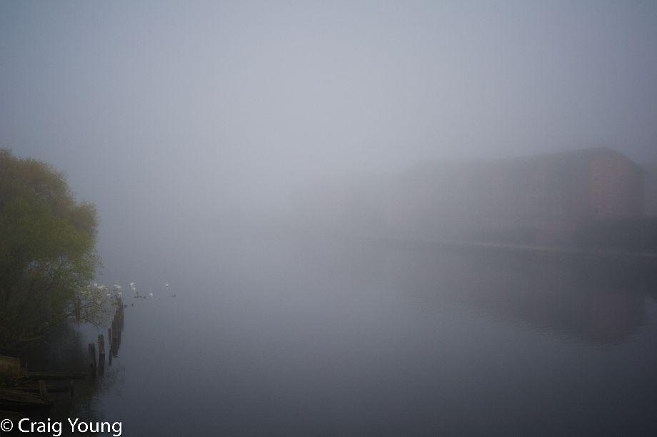 Fog 2 (1 of 1)