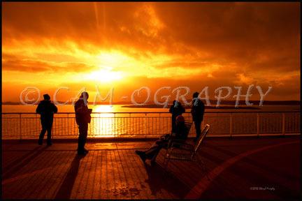Picture Landscapes 33