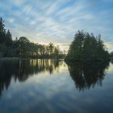 CSL049-Dyce Fishing Lake-6101