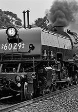'6029 - Tallong'
