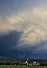 'Moruya Storm'