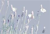 Lavender Butterflies (Code - LB2)