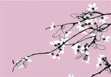 Pink Blossom (Code PB2)