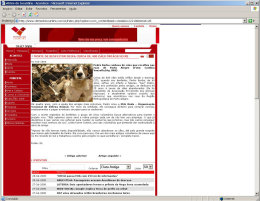 Vitrine do Tocantins news website