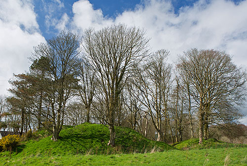 Motte and Bailey - Wolf's Castle