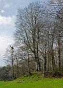 Motte and Bailey - Hen Castell / Hean