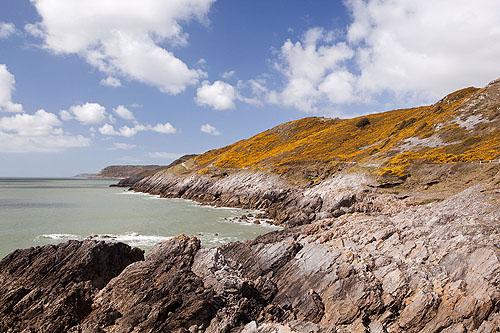 Newton Cliffs