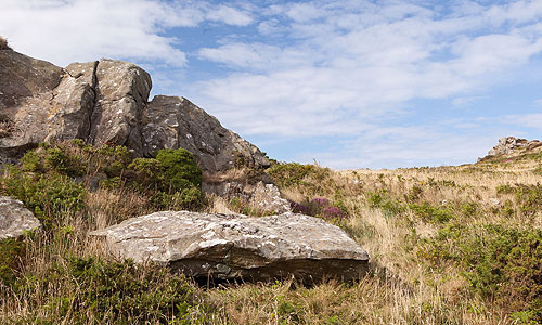Carn Gilfach - Chambered Tomb