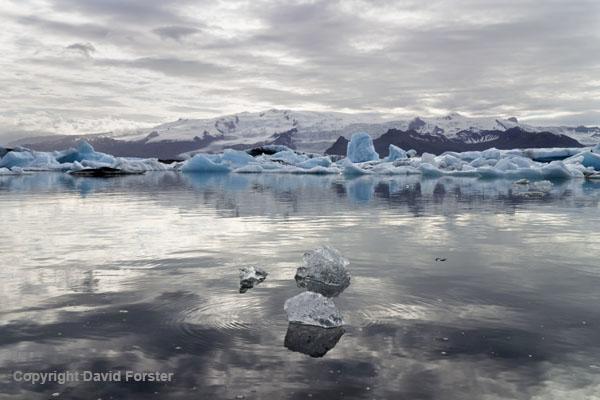 01M-1055a Icebergs in the Jokulsarlon Glacial Lagoon Vatnajokull National Park Iceland.