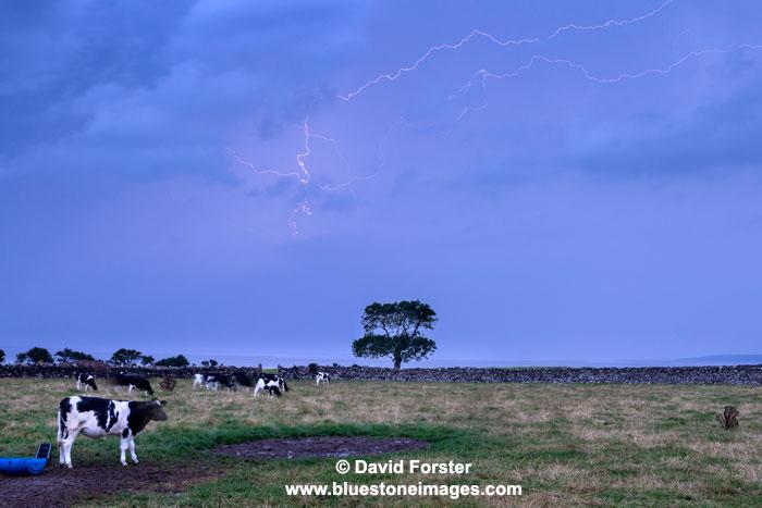 03M-7044 Lightning over Morecambe Bay from Silverdale Lancashire UK