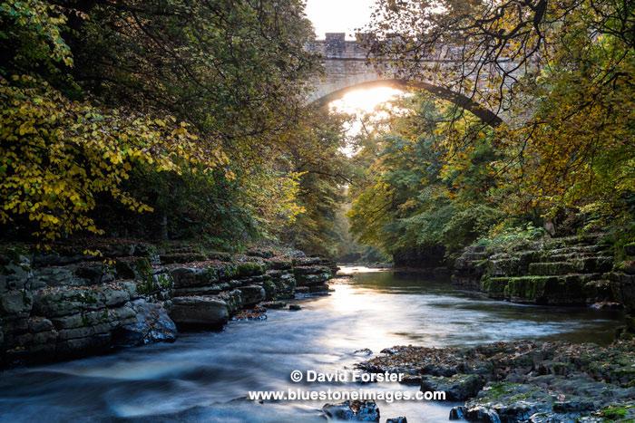 03M-9002 Egglestone Abbey Bridge, River Tees, Barnard Castle, Teesdale, County Durham