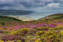 04M-7690 Porlock Bay from Bossington Hill, Exmoor, Somerset, UK