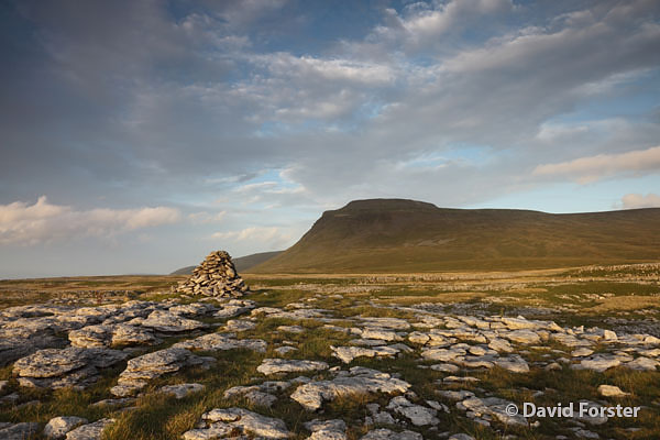 05D-5437 Ingleborough From White Scars in Late Evening Light Yorkshire Dales National Park UK