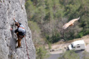 06-3247a Composite - Rock Climber and Vulture, Cevennes National Park, France