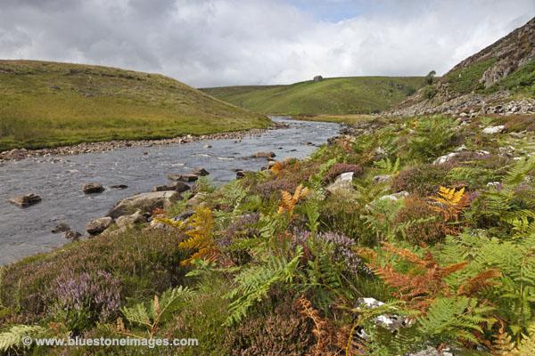 06D-3354 River Tees Below Falcon Clints on the Pennine Way Footpath Widdybank Fell Teesdale County Durham UK