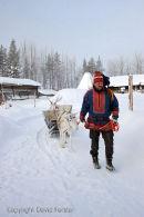 07-5179 Man Wearing Traditional Sami Clothing Leading Reindeer.