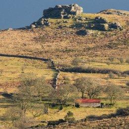 Emsworthy Barn 2