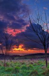 Torbay Dawn 2