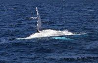Humpback backstroke