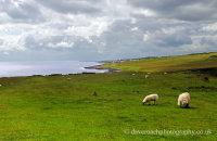 Coast walk -  looking back toward Craster