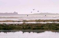 Blakeney Point from Stiffkey Marsh