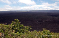 Sierra Negra Volcano, Isabela