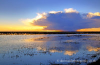Sunset in the Doñana National Park