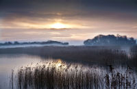 Sunrise in the Somerset levels