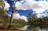 Wetland nature reserve, Victoria