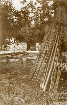 Wood Yard Esatnor