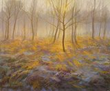 Frosty Morning 18inx24in