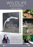 Wildlife Wanderer can be ordered from all good bookshops and online.