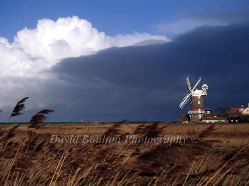 Images of Norfolk