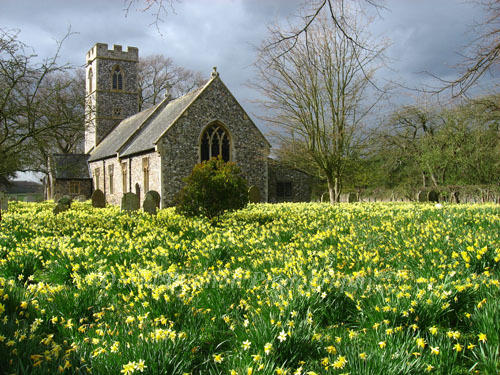 Norfolk Churches & their wildlife