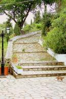 Monestary Steps & cat
