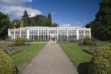 Camellia House - Wollaton Park