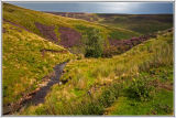 Gunnerside View Yorkshire Dales